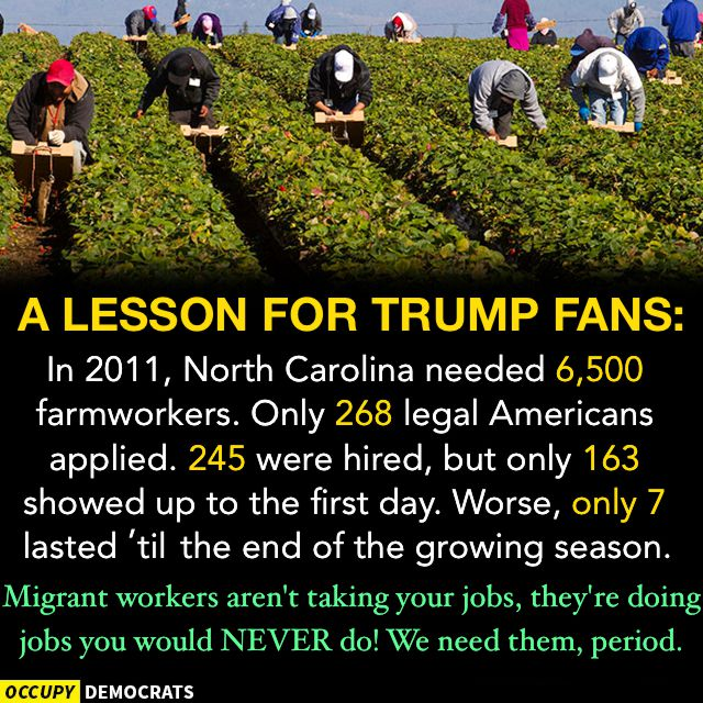 2017 OccupyDemocrats a lesson for Trump fans