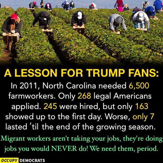 2017 OccupyDemocrats a lesson for Trump fans
